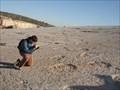Image for Pedreira do Galinha - Dinossaurs Footprints