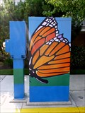Image for Monarch Butterfly - Ocean City, NJ