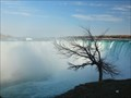 Image for Chicago: Niagara Falls - Ontario / Canada