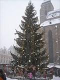 Image for Vánocní strom v Plzni, CZ, EU