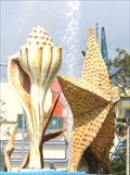 Image for Seashells - Cancun, Mexico