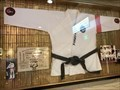 Image for Elvis's Karate Robe - Stateline, NV