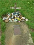 Image for The grave of Sambo