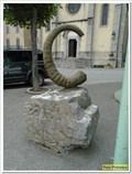 Image for Le fossile de la place François Béraud - Barrême, France