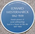 Image for Edward Westermarck - University of London, Senate House, London, UK