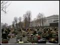 Image for Cmentarz parafii sw. Jadwigi Slaskiej - Chorzów, Poland