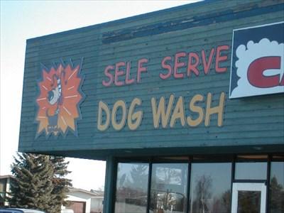 Self serve dog wash edmonton ab self serve pet wash on self serve dog wash edmonton ab self serve pet wash on waymarking solutioingenieria Gallery
