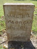 Image for Walter Morgan - Fox Cemetery - Rand, TX