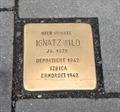 Image for Ignatz Wild - Erlangen, Germany