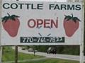 Image for Cottle Strawberry Farms -- Stockbridge, GA