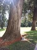 Image for Sen Byron D Sher - Sacramento, CA