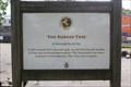 Image for The Rubber Tree -- Warwick Parish BM