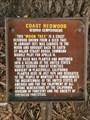 Image for Coast Redwood - Monterey, CA