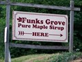 Image for Funks Grove Pure Maple Sirup - Funks Grove, IL
