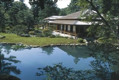 In shigure-tei, we can enjoy a garden and Maccha.*(*green tea like a Tea ceremony)