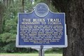 Image for The Blues Trail: Mississippi to Florida-The Bradfordville Blues Club