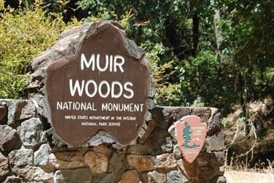 Muir Woods National Monument Nps Passport Cancellation