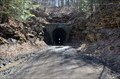Image for Peale Tunnel