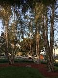 Image for 9/11 Trees - Orange, CA