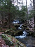 Image for Logans Falls