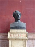Image for Vincenzo Bellini - Palermo, Sicily, Italy