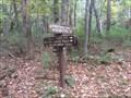 Image for Interloken Trail