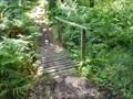 Image for Fairy Trail Footbridge - Portpatrick, Scotland, UK