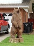 Image for Wooden bear - Moore, Oklahoma USA