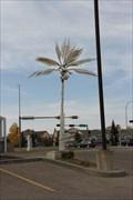 Image for Cochrane Palace Palms - Cochrane, Alberta