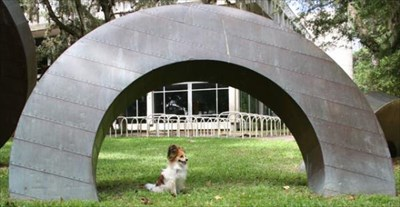 My Papillon, Bijou, takes in this modern sculpture.