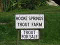 Image for Hooke Springs Trout Farm - Higher St Lane, Hooke, Beaminster, Dorset, UK
