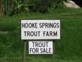 Image for Hooke Springs Trout Farm - Higher St Lane, Hooke, Beaminster, Dorset, UK