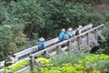 Image for Ivanhoe Creek Bridge - Juan De Fuca Trail
