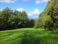 Image for Mount Dandenong Arboretum