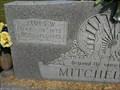 Image for 100 - James W. Mitchell - Crane, MO