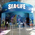 Image for SEA LIFE Aquarium Orlando - Florida, USA.