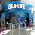 Image for SEA LIFE Aquarium Orlando - Florida, USA.