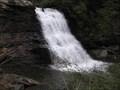 Image for Muddy Creek Falls
