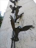 Image for Flying Ducks - Eugene, Oregon