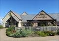 Image for Sessile Oak - Llanelli, Carmarthenshire, Wales.