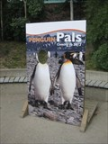 Image for Penguin Pals - Calgary Zoo