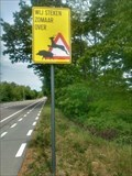 Image for Wild boar and deer crossing, Diepenbeek, Belgium