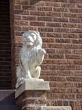 Image for Ina Mae Lions - OKC, OK