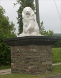 Image for Lions - Elmira, NY