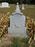 Image for Willie J. Spikes - Fox Cemetery - Rand, TX