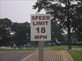 Image for Drive 18 MPH BUT with Reverence!