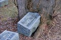Image for Headstone Eating Tree - Painted Post, NY