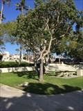 Image for Franklin D. Roosevelt - Redondo Beach, CA