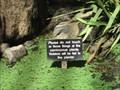 Image for Carnivorous Plant Bog - Balboa Park - San Diego, CA