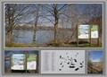 Image for Ploegsteert natuurreservaat - Ploegsteert - Henegouwen - Belgium